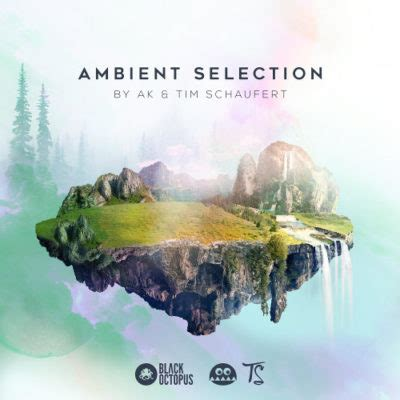Black Octopus Sound - Ambient Selection by AK & Tim