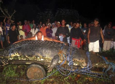 21-foot 'man-eating' crocodile caught in Philippines may