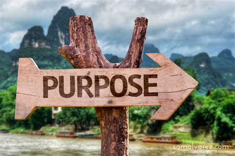 3 ways to get closer to finding your life's purpose by