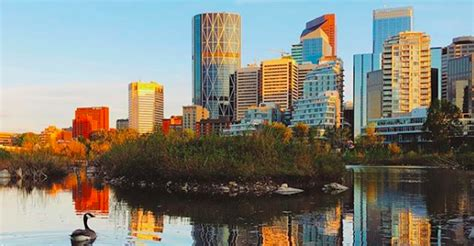 Calgary ranked 4th most liveable city in the world | Daily